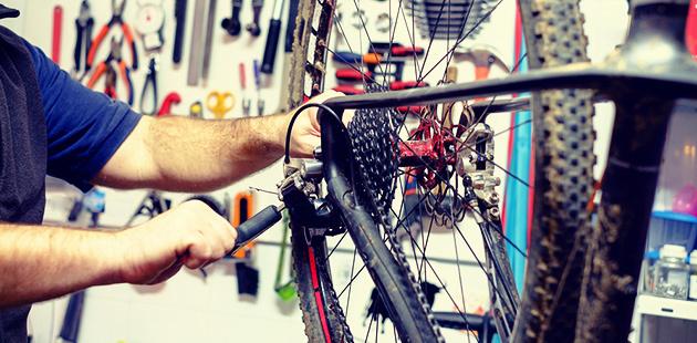 Roto Training & Bike Maintenance